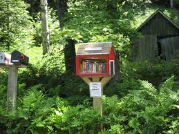 Little Free Libary in the Country