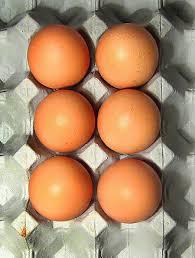 eggs (half dozen)