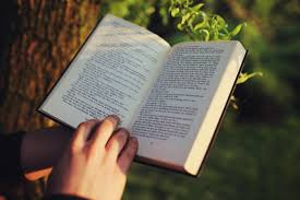 reading book tree