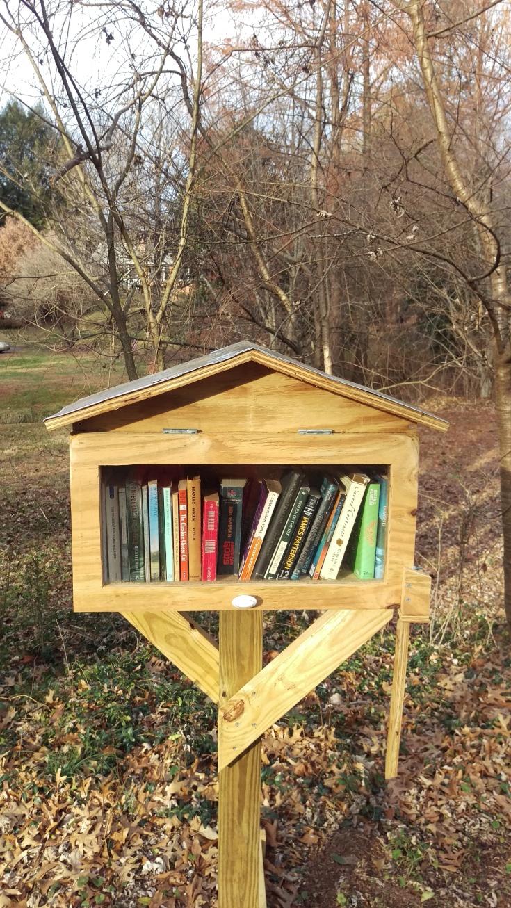 Little Free LIbrary-Ednam Forrest, Charlottesville, VA