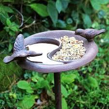 bird bath-feeder