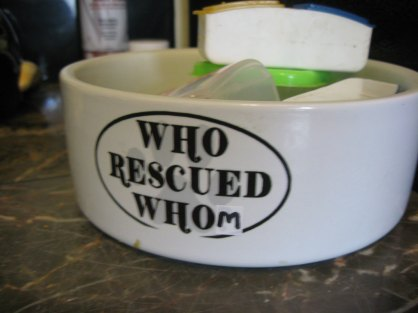 grammar police who rescued whom