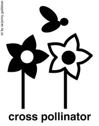 cross pollinator