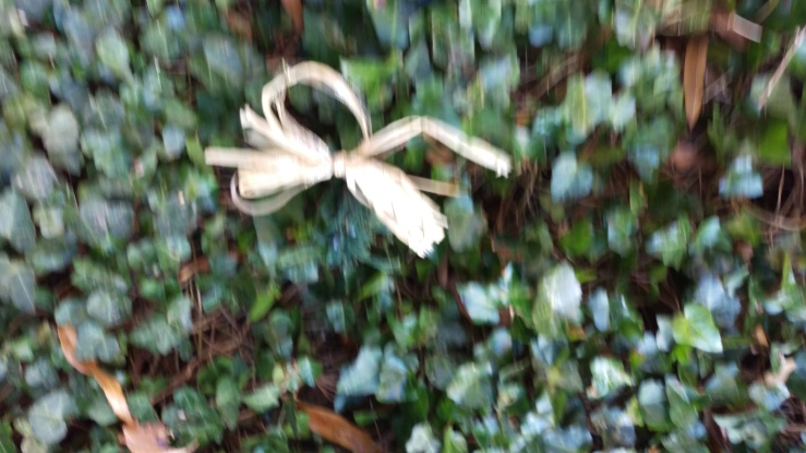 squirrel wreath--all that was left