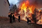 paradise fire
