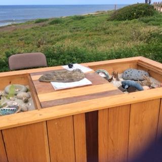 Tide pool table