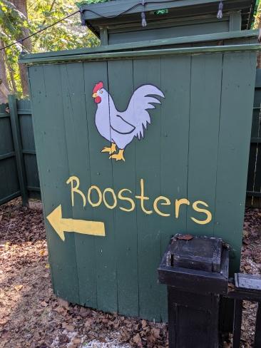 Bathroom-Greenville Market--Rooster