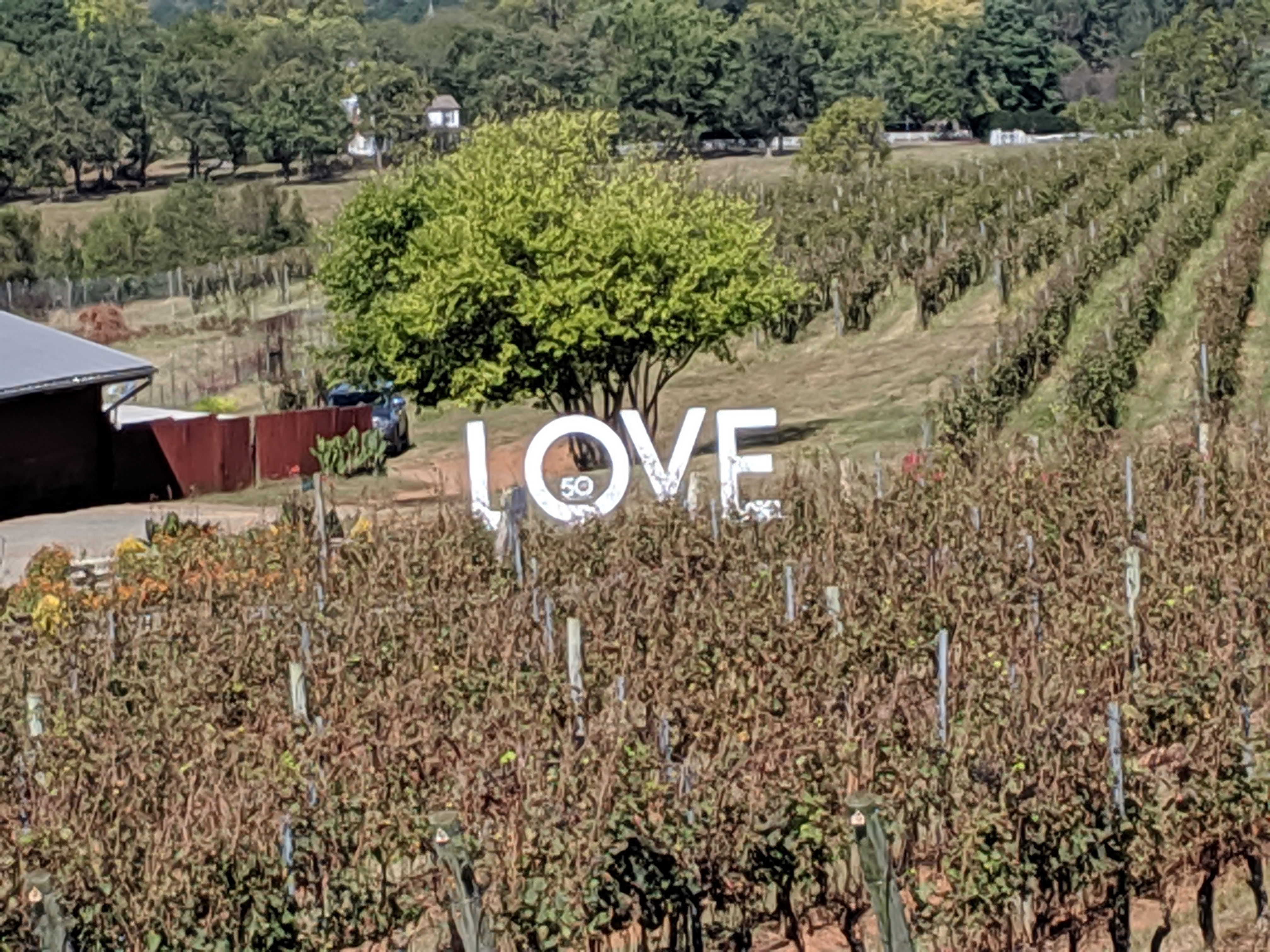 Love--Barboursville Winery.jpg