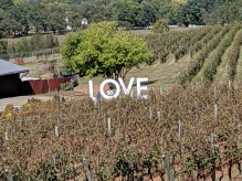 Love--Barboursville Winery