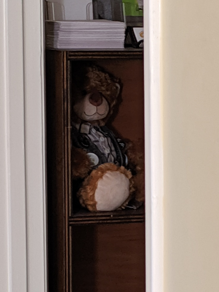 Writer House Bear