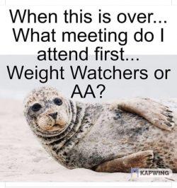 Seal AA or WW