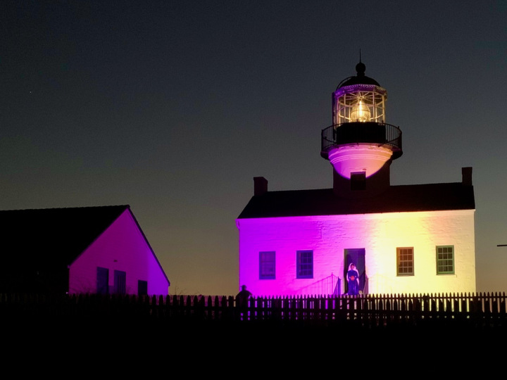 Lighthouse at night illuminated with purple lights on left side and gold lighrs on right side